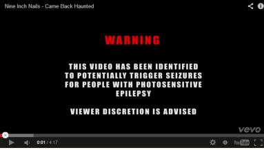This warning is shown briefly before the video begins showing an onslaught of flashing images.